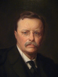 The Teddy Roosevelt - 10 K Cups
